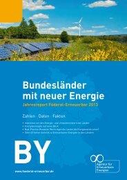 Jahresreport föderal erneuerbar 2013