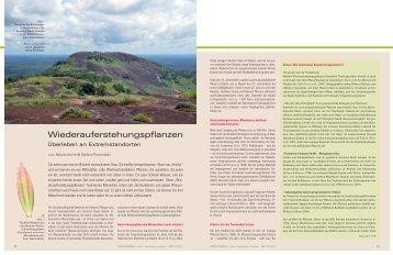 NFM 1-2-2011-RZ4.indd - Botanischer Garten