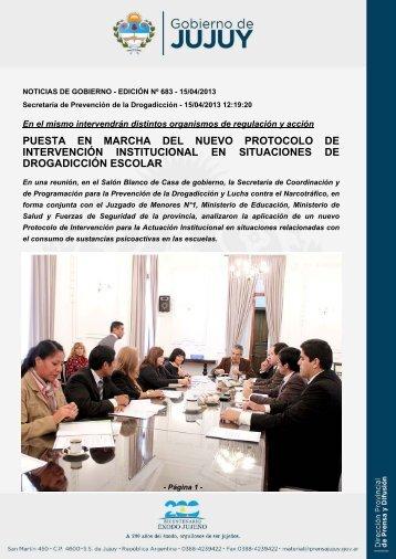 puesta en marcha del nuevo protocolo de intervención institucional ...