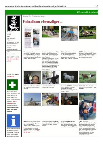 Fotoalbum ehemaliger ... - SOS animali international
