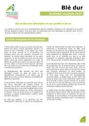 Blé dur - Chambre d'Agriculture des Deux-Sèvres