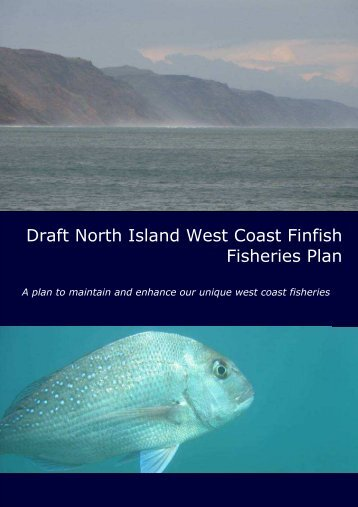 NIWC Draft Finfish Plan 2009 1. Introduction.pdf - Ministry of Fisheries