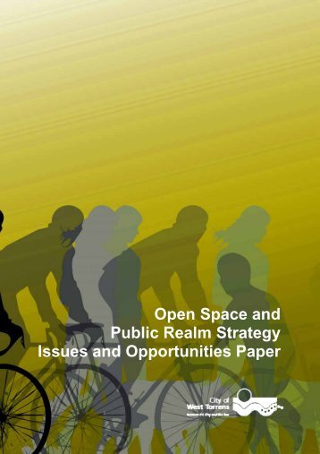 Open Space and Public Realm Strategy Issues and Opportunities ...