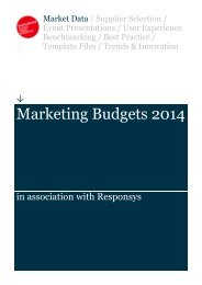 Econsultancy-Marketing-Budgets-2014-Report