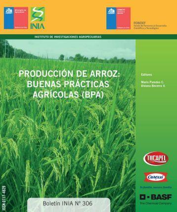 Manual-de-Arroz-PDF