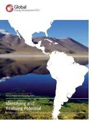 Annual Report 2008 - Global Energy Development