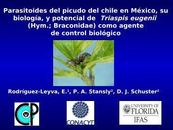 Parasitoides del picudo del chile en México, su biología, y potencial ...
