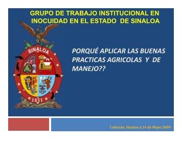Presentacion Grupo Tecnico 15-05-2009