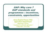 GAP standards and programmes : incentives, constraints ...