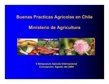 Buenas Practicas Agrícolas en Chile Ministerio de Agricultura