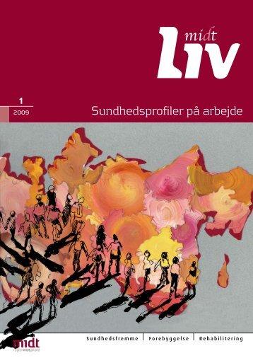 Nr. 1, 2009 - Sundhedsprofiler på arbejde - CFK Folkesundhed og ...