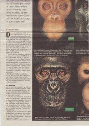 utraditionel le portratter af aber. Alle verdens aber ... - Camilla Alfthan