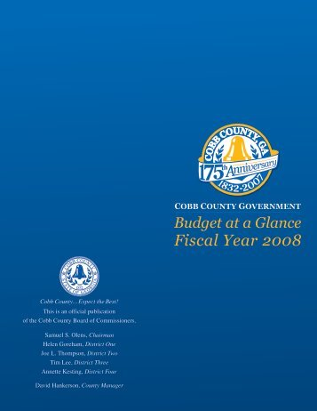 Project Category FY08 Budget - Cobb County