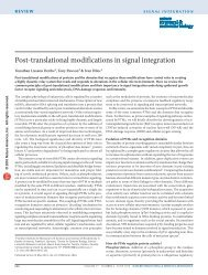 Post-translational modifications in signal integration
