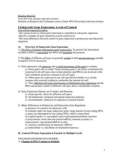I Eukaryotic Gene Expression - Biochemistry and Molecular