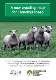 WEB-Charollais-breed-index-A5
