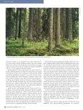 Kanakull vajab metsarahu - Page 5