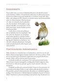 Suvised aialinnud ja nende abistamine - Eesti ornitoloogiaühing - Page 2