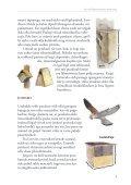 Suvised aialinnud ja nende abistamine - Eesti ornitoloogiaühing - Page 5