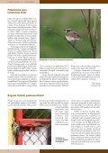 Põllulindude seire tulemused Eestis - Page 2