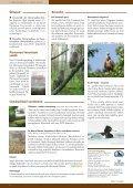 Põllulindude seire tulemused Eestis - Page 4