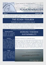ECASA Newsletter Issue 3