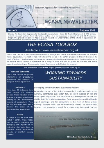 ECASA Newsletter Issue 3