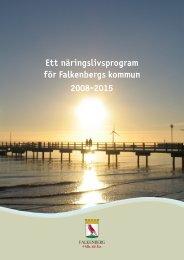 Ett näringslivsprogram för Falkenbergs kommun 2008-2015