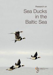 Research on Sea Ducks in the Baltic Sea