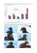 Winter eagle web camera 2012/13 results - Page 6