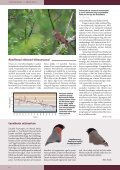 Loe Tiirutajat siit. - Eesti ornitoloogiaühing - Page 2