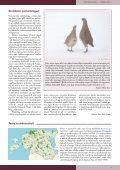 Loe Tiirutajat siit. - Eesti ornitoloogiaühing - Page 5