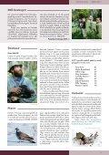 Loe Tiirutajat siit. - Eesti ornitoloogiaühing - Page 7
