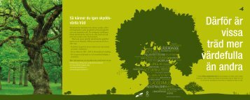 Därför är vissa träd mer värdefulla än andra - en broschyr