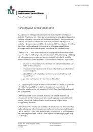 Handlingsplan för lika villkor 2013 - Medarbetarwebb - SLU