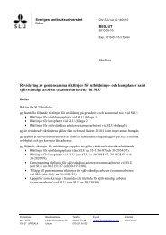 Riktlinjer för utbildningsplaner vid SLU