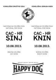 CAC - HKS-a