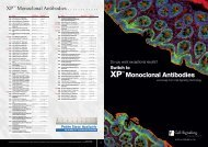 XP™ Monoclonal Antibodies - Lab-JOT