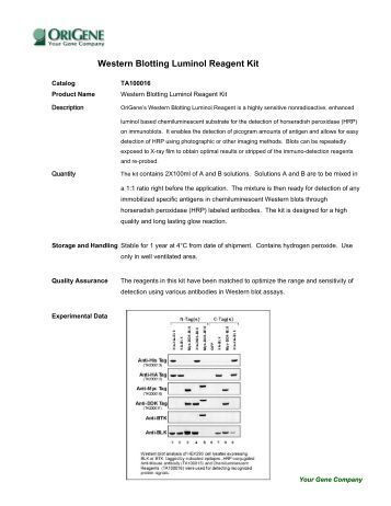 Amersham Ecl Select Western Blotting Detection Reagent