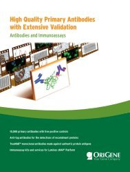 High Quality Primary Antibodies with Extensive Validation - OriGene
