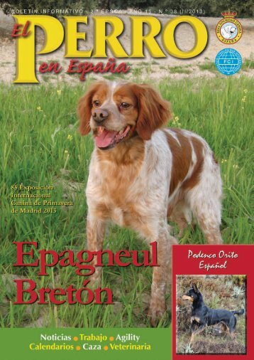 Primavera - Real Sociedad Canina de España