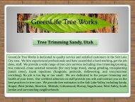 Tree Trimming Sandy, Utah