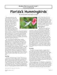 Florida's Hummingbirds