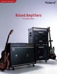 "D-Bassâ""¢ Amplifier - Owner's Manual - Roland"