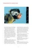 Sjukdomsläget hos vilt 2007 - SVA - Page 6