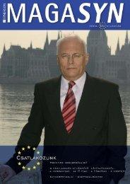 M_Syn_tavasz_2004 EU - Synergon