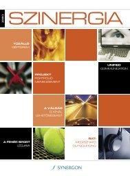 2 0 0 9 /2 projekt portfólió menedzsment unified ... - Synergon