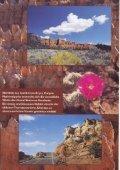 Auf abenteuerlichen Pisten durch Utah - Fotos und Reiseberichte ... - Seite 3