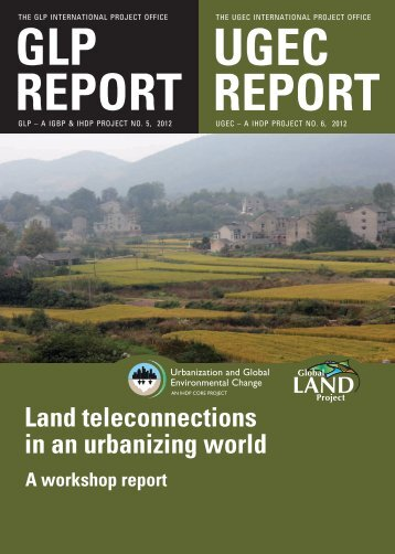 Land teleconnections in an urbanizing world - A workshop report