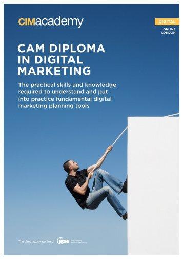 cim level 6 marketing plannimg